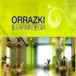 Orrazki logoa